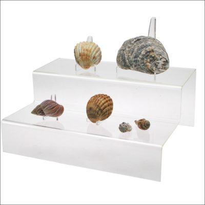Seashell Display Steps-Clear Acrylic Glass Riser Wide Step Display