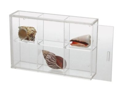 Seashell Display Case - Small 6 Compartments