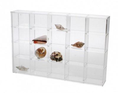 Seashell Display Case - Medium 20 Compartments