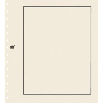 Crisp Cream Background Pages Per 10