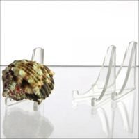 "Seashell Display Stand-Tri Easel 3-1/8""H"