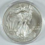 Silver Eagle in Capsule